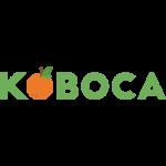 Kobaca Survey